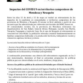 Impactos del COVID19 en territorios campesinos de Mendoza yNeuquén